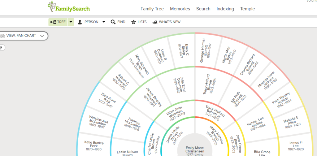 family tree new view fan chart